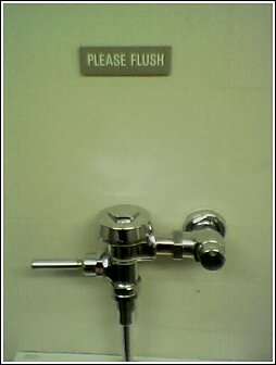 Plese Flush